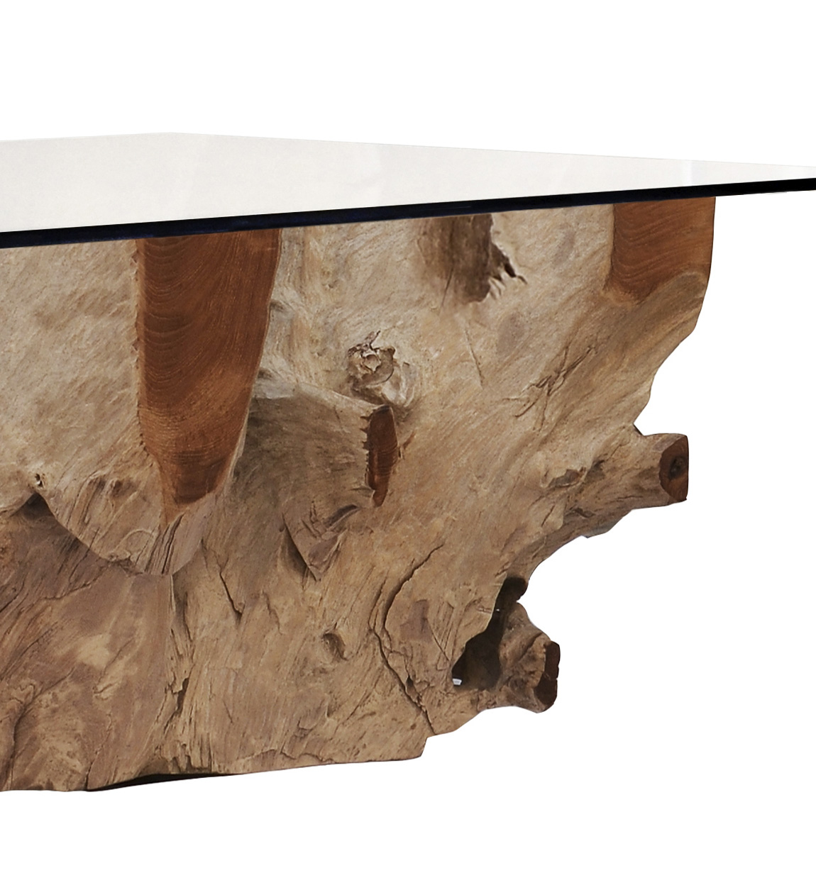 Bleached Teak Root Coffee Table With Glass Moycor